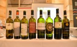 3. I vini in degustazione